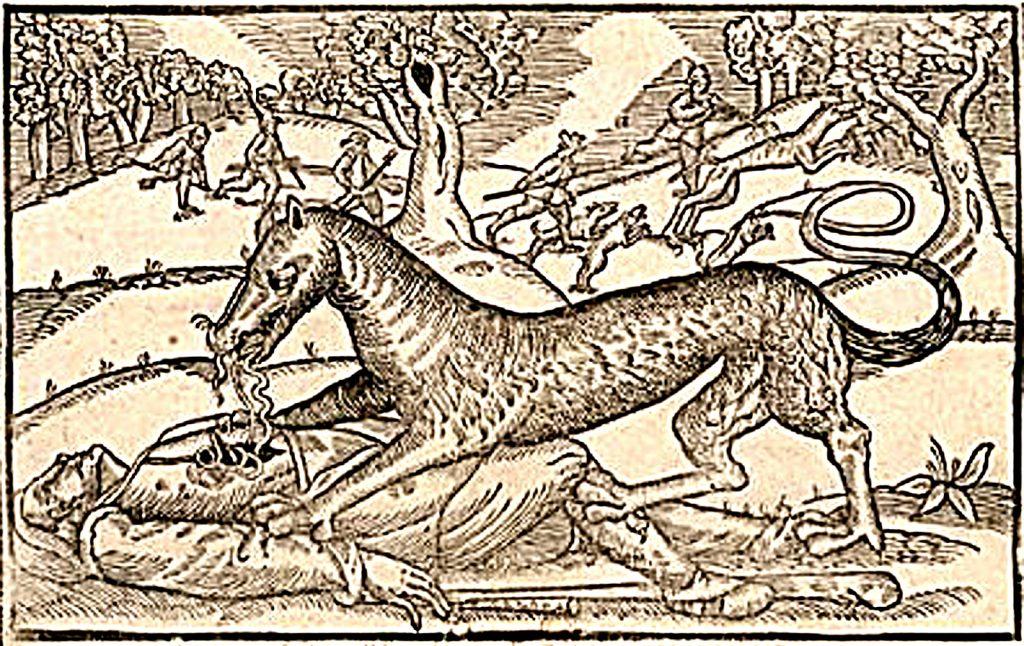 Jacques Roulet, Le loup-garou d'Angers