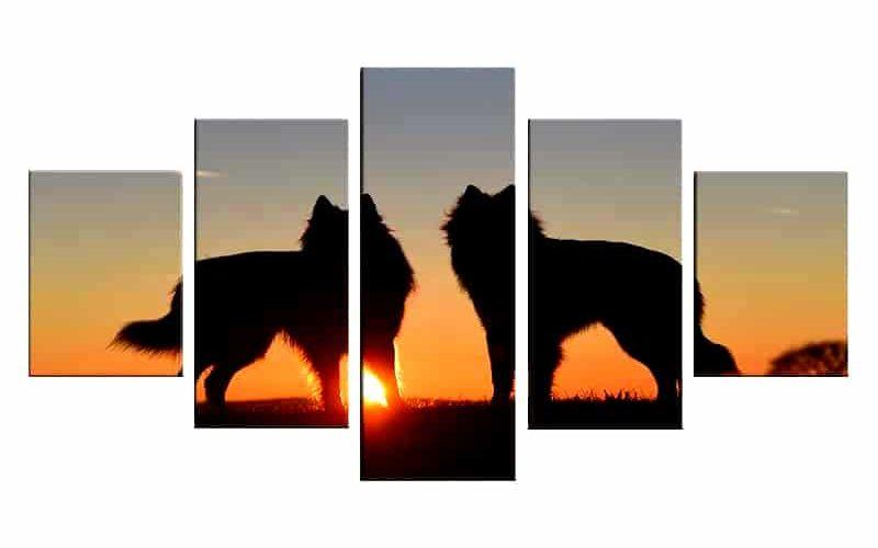 Tableau Loup Coucher de Soleil